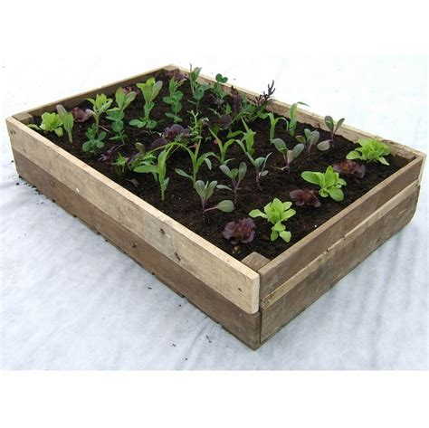 Wooden Crate Planter by Traditional Wooden Crate Planter Rocket Gardens