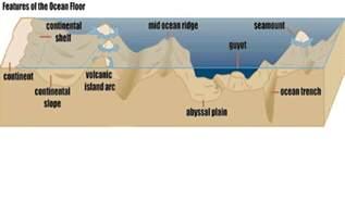 Floor Diagram ocean floor diagram