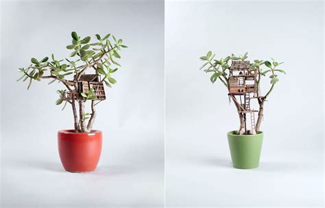 mini house plants tiny wooden houses built around your plants fubiz media