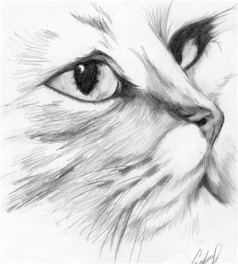 imagenes de ojos hechos a lapiz dibujos hechos a lapiz taringa