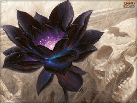 the black lotus wallpaper of the day black lotus magic the gathering