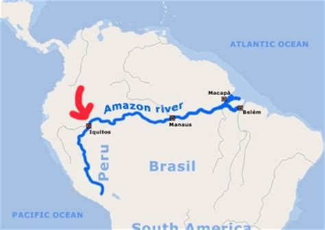 amazon river map sharks in the amazon river rainforest cruises