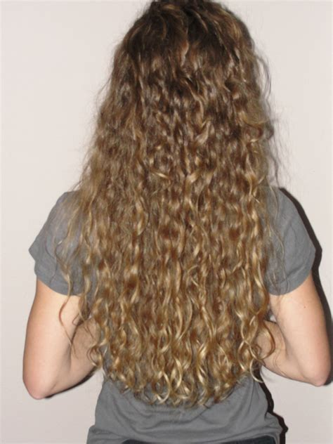 curly hairstyles for long hair back view long super curly hair back view www imgkid com the