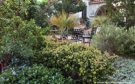 California Plants For The Garden by Gardens Here