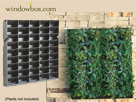 drip  irrigation  green wall systems living wall
