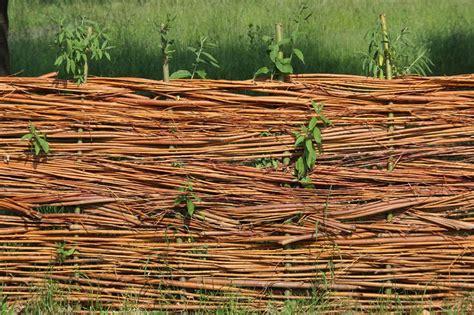 sichtschutz für den garten 23 rankgitter holz selber bauen bvrao