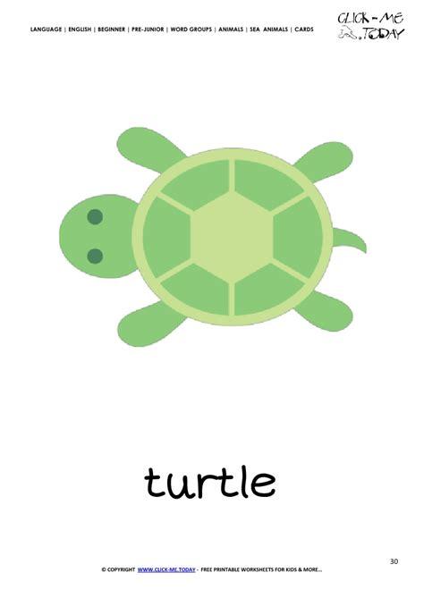 free printable sea animals flashcards sea animals wall cards sea animal flashcard turtle printable card of turtle