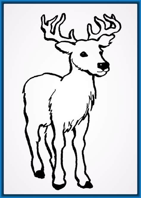 imagenes de animales bonitos para colorear colorear archivos dibujos faciles de hacer