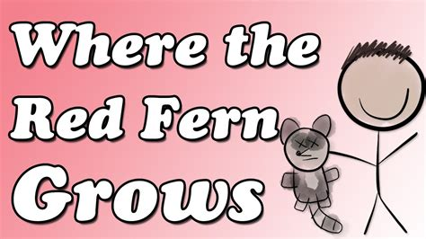 book report on where the fern grows where the fern grows by wilson rawls book summary and