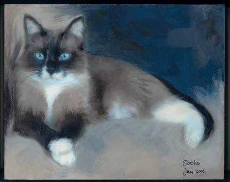 adopt a pet shih tzu shih tzu rescue portrait of your pet