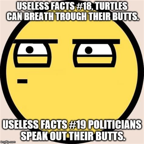 Meme Facts - random useless fact of the day imgflip