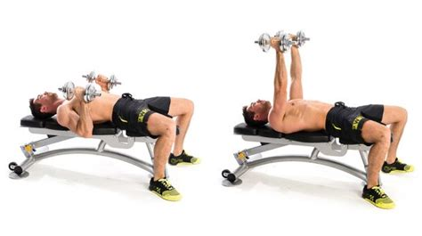 hammer dumbbell bench press how to master the bench press coach exercise guides