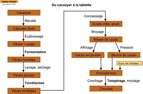 diagramme de fabrication mousse au chocolat fabrication du chocolat noir