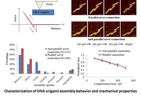 Dna Origami Applications - thermodynamics and mechanical properties characterization