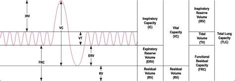 Forced Vital Capacity Pft Interpretation Template