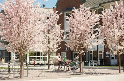 Lasell College Mba by Undergraduate Graduate Programs Boston Ma