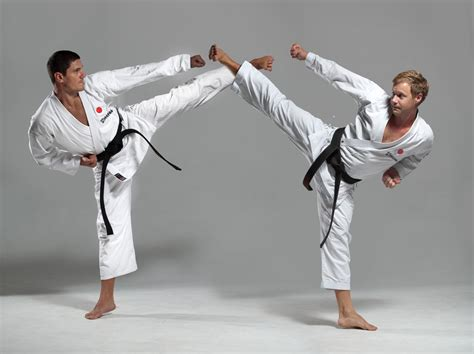 What Are The Best Free Search Karate Asian Japanese