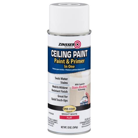 Zinsser 13 Oz Ceiling Paint And Primer In One Spray Case Popcorn Ceiling Spray Paint