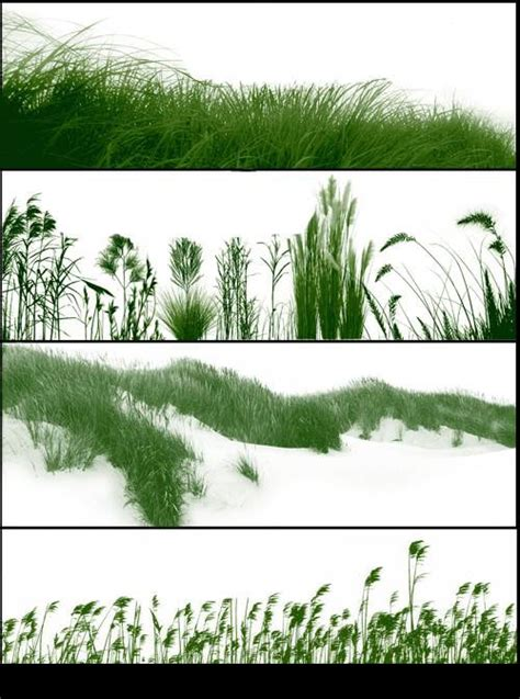 pattern photoshop vegetation grass brushes for photoshop photoshop brushes free download