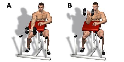 alimentazione per sviluppare i muscoli 8kg di massa in 6 mesi come aumentare la massa muscolare