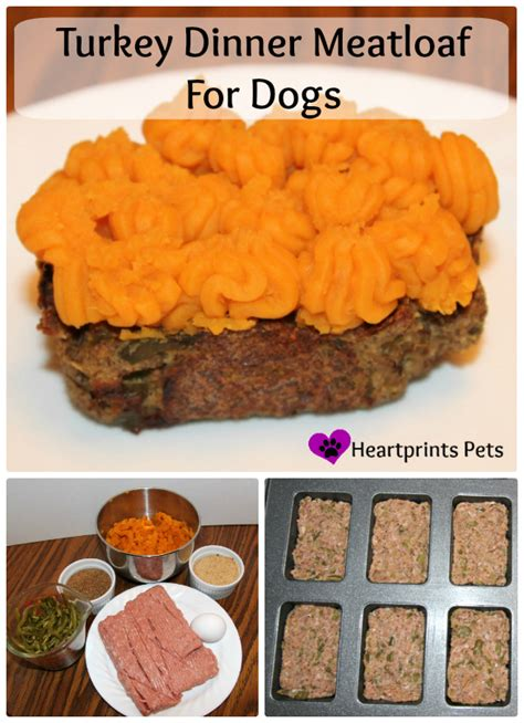 turkey for dogs turkey dinner meatloaf for dogs heartprints pets
