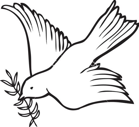 White Dove Template by Best Photos Of Confirmation Dove Template Holy Spirit