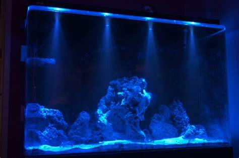 illuminazione led per acquario illuminazione dell acquario