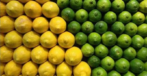 lime or lemon which is better lemon vs lime one is better for your health do you