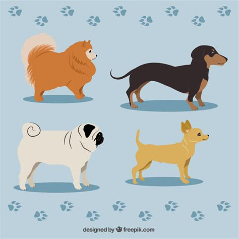 variety of breeds variety of breeds vector premium