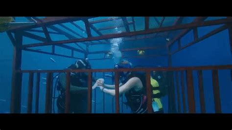 47 meters to feet why 47 meters down might be the worst film for the ocean