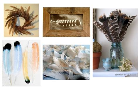 feather decorating ideas feathers pinterest