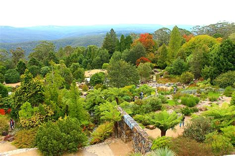 Experiencing Autumn In The Blue Mountains Mt Tomah Botanic Garden