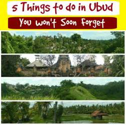 Stuff To Do In 5 Things To Do In Ubud Bali