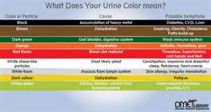 urine color meaning what causes changes when to worry