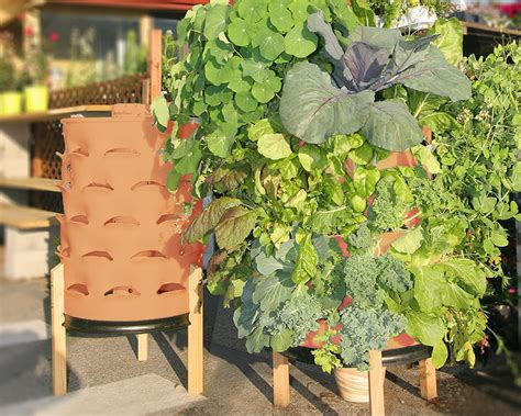 fertilizing garden tower revolutionizes