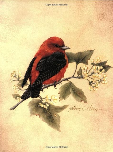 Painting Songbirds With Sherry C Nelson pin by johnson on decorative