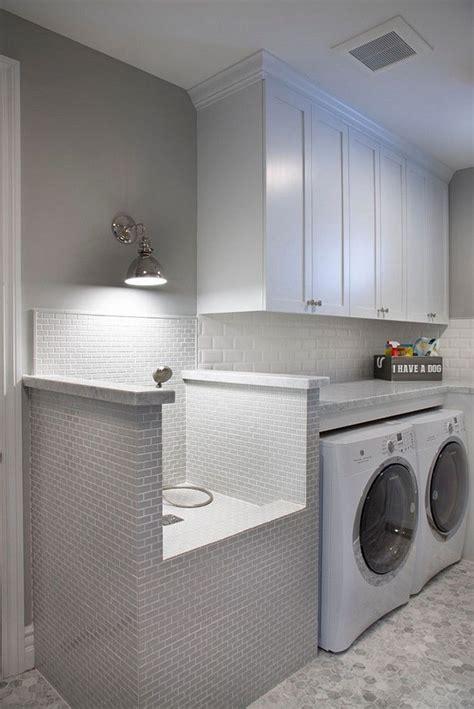 dog   combine  laundry room
