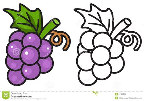 uva clipart grapes clipart uva pencil and in color grapes clipart uva