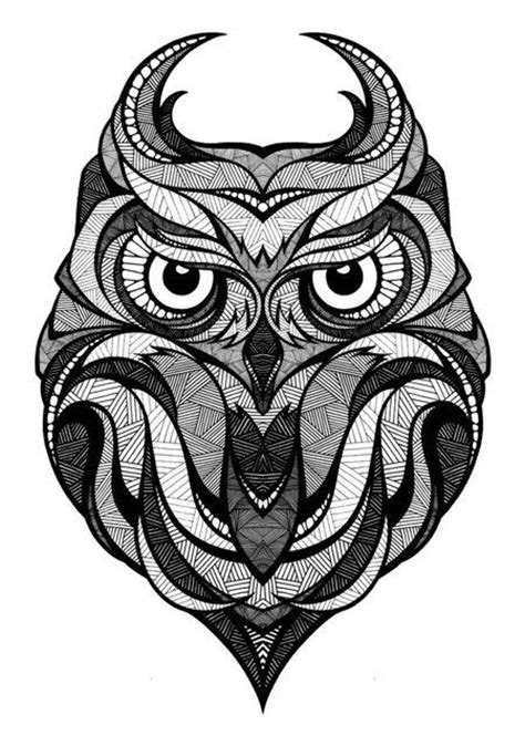 designspiration drawings owl illustration black and white bird and feather