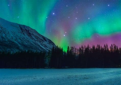 see the northern lights in norway 15 best google doodles about hungary images on pinterest