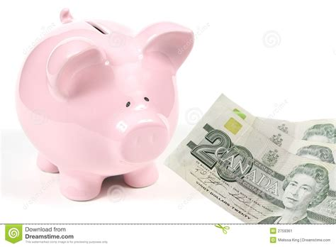 pink piggy bank with money pink piggy bank with money stock image image 2759361