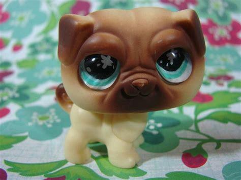 pug pet shop littlest pet shop pug lps i but don t
