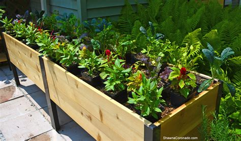 Elevated Garden Planters by How To Plant An Elevated Garden Bed Coronado