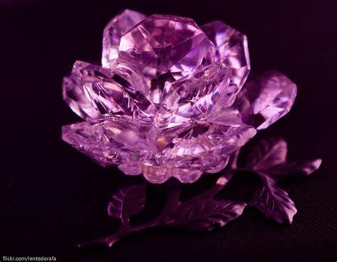 imagenes rosas de cristal imajenes de rosas de cristal imagui