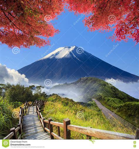 cascadas con 225 rboles imagui fotos de paisajes naturales ecolog a verde imageing de