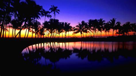 tropical desktop backgrounds wallpapertag