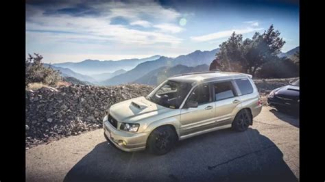 subaru forester falls cliff while on a spirited drive