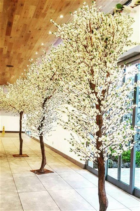 tree decorators for hire white blossom tree hire for weddings events muse decor hire