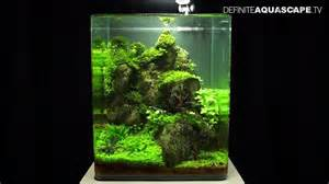 Nano Aquascapes by Aquascaping The Of The Planted Aquarium 2013 Nano