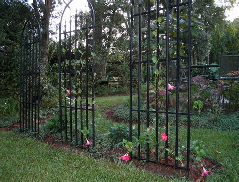 Trellis Flowers trellis architecture wikiwand